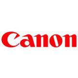 Canon Tinte PFI-301GY 1495B001 grau