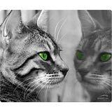 Speedlink Silk Mousepad Cat