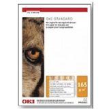 OKI 09624133 Standard M-B-105 Banner 297 x 1200mm 250 Blatt