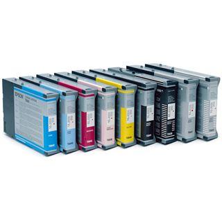 Epson Tinte C13T605700 schwarz hell