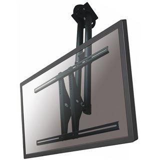 Newstar PLASMA-C100BLACK Deckenhalterung schwarz