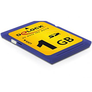 1 GB Delock Standard SD Class 2 Bulk